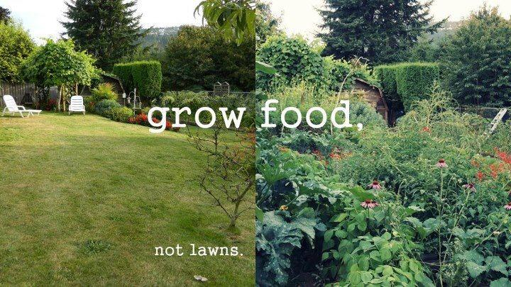 grow-food-not-lawns